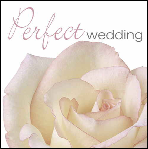 PERFECT WEDDING (CD)